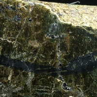 Plumbopalladinite Majakite & Polarite