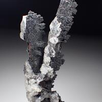 Goethite Psm Selenite & Calcite
