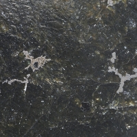 Orcelite