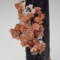 Rhodochrosite Aegirine & Polylithionite