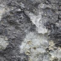 Seligmannite
