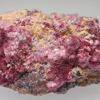 Erythrite Smolyaninovite & Mansfieldite