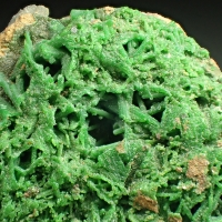 Conichalcite Psm Olivenite
