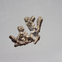 Palladian Gold