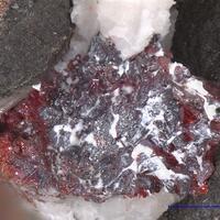 Proustite Löllingite & Native Arsenic