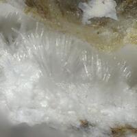 Kottenheimite