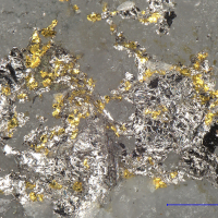 Tsumoite Gold & Tellurobismuthite