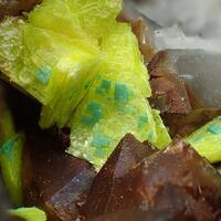 Uranocircite & Torbernite