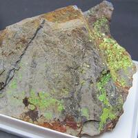 Ellefelder U Minerals Update