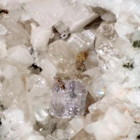 Polycrase-(Y) & Fluorite