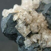 Fluorite On Galena