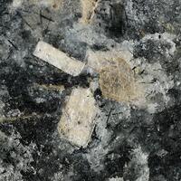 Murmanite