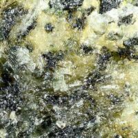 Wilkinsonite
