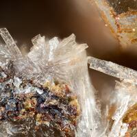 Bucket Of Holes Minerals: 24 Oct - 30 Oct 2021