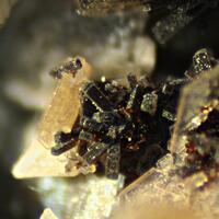 Genthelvite Natrolite Kupletskite Polylithionite Catapleiite & Albite