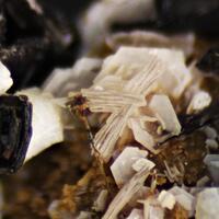 Kupletskite Pyrochlore Catapleiite Gonnardite & Catapleiite Psm Sodalite