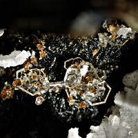 Catapleiite Astrophyllite Sérandite & Zircon