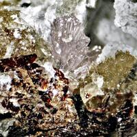 Ancylite-(Ce) Pyrophanite