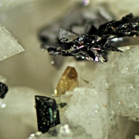 Titanite & Molybdenite