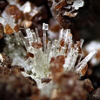Leifite Rhodochrosite Fluorite