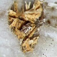 Cappelenite-(Y) & Niobokupletskite