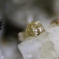Mckelveyite-(Y) & Labuntsovite
