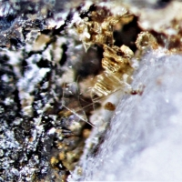 Charmarite