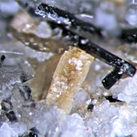 Unnamed (Ca-Na-ordered analogue of Korobitsynite)