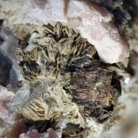 Bastnäsite Ancylite-(Ce) Nenadkevichite Kupletskite & Epididymite