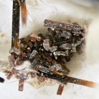Kupletskite Catapleiite Polylithionite Microcline & Albite