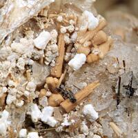 Rhabdophane Gonnardite Catapleiite & Albite