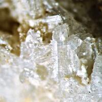 Palermoite