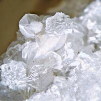 Gobbinsite & Chabazite
