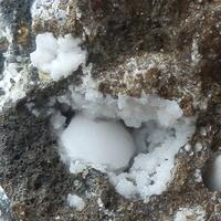 Tetranatrolite