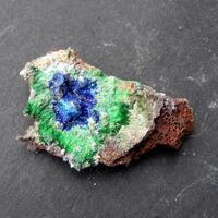 Azurite Conichalcite & Olivenite