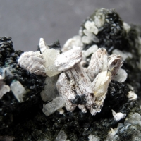 The Minerals: 14 Oct - 21 Oct 2018