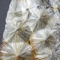 The Minerals: 11 Jun - 18 Jun 2019