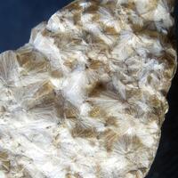 Carpholite