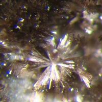 Allanite-(Ce) & Fluorite