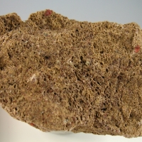 Potassic-fluoro-richterite