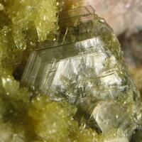Brucite & Vesuvianite