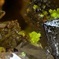 Carnotite & Zeunerite