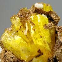 Legrandite & Arseniosiderite