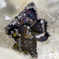Famatinite On Chalcopyrite