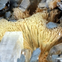 Arsenocrandallite Psm Agardite