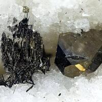 Seligmannite & Dufrénoysite
