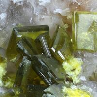 Saléeite & Phosphuranylite