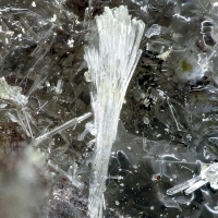 Unnamed (Fe2+-analogue of Brandtite)