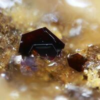 Chalcophanite & Pyrolusite