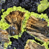 Bassetite & Carnotite